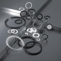 Joints TriClamp & toriques en EPDM, PTFE, Silicone, Viton, Gylon de marque RubberFab, Newman & Garlock Technetics